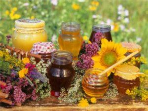 Квітковий мед: лікувальні властивості, користь, колір