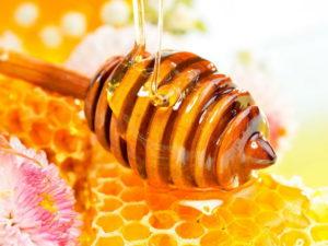 користь квіткого меду