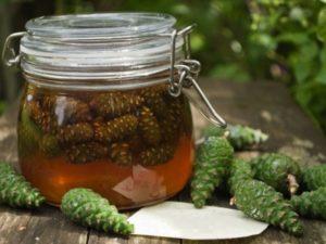 Сосновий мед із бруньок, шишок і пагонів: що лікує?