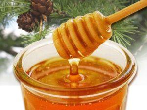 Тайговий мед: корисні властивості, склад, калорійність