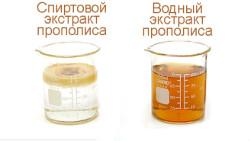 Водний розчин прополісу: рецепти та засоби прийому