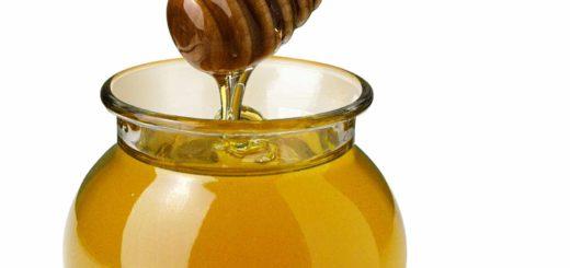 хвойний мед