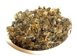 Бджолиний підмор при онкології: як правильно застосовувати