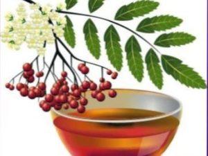Корисні властивості горобинового меду: сорти меду.