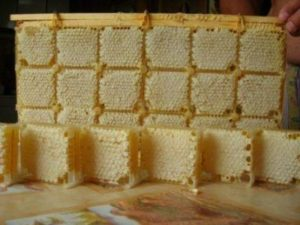 Що таке стільниковий секційний мед, як зберігати