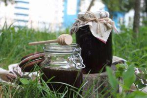 Гречаний мед та його властивості