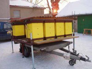 Перевезення бджіл