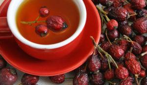 Шипшиновий чай для схуднення