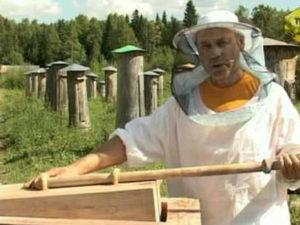 Метод двухматочного бджільництва по Свириденко