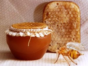 мед з паді корисні властивості