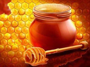 Користь меду