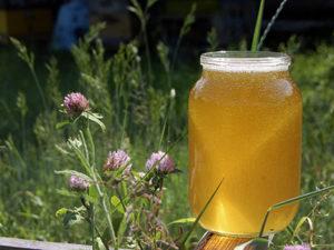 Травневий мед дуже корисний