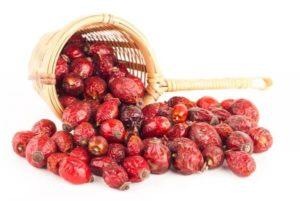 Шипшина для лікування нирок і сечового міхура