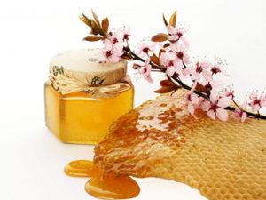 Користь травневого меду