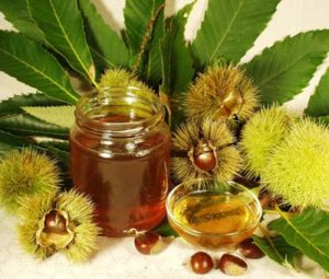 мед каштановий