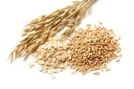 Як зробити пшеничну брагу
