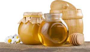 корисні властивості меду з буркуну