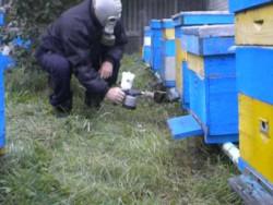 Дим-пушка для боротьби с кліщом бджіл