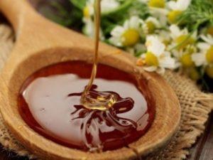 Лісний мед