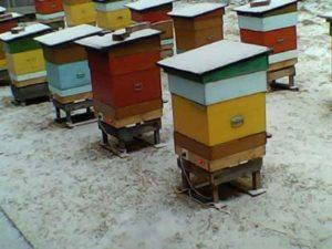 Обігрів бджіл