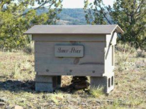 Як утримувати бджіл в населених пунктах