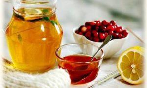 Журавлина з медом - лікувальні властивості