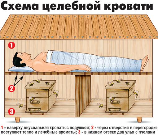 схема лікувального ліжка в апібудинку