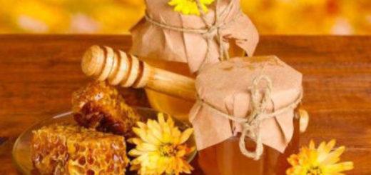 Методи перевірки якості меду