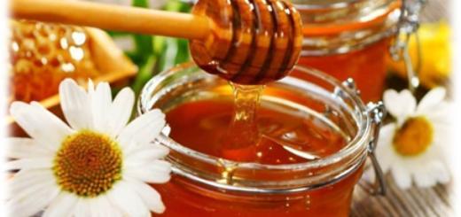 Мёд и его полезные свойства для организма